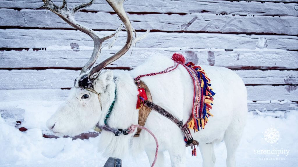 Reindeer are an important part of the Sámi culture.