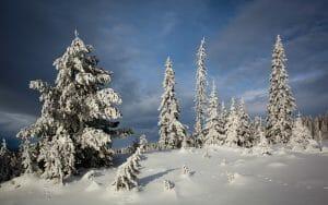 Welcome to snowy Scandinavia - our 2019 Winter Threadventure destination.