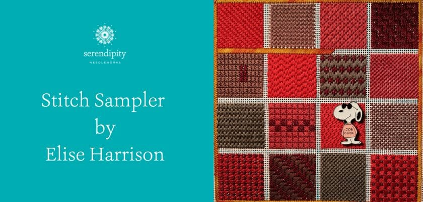 Stitch samplers are a terrific way to learn new canvas embroidery stitches.